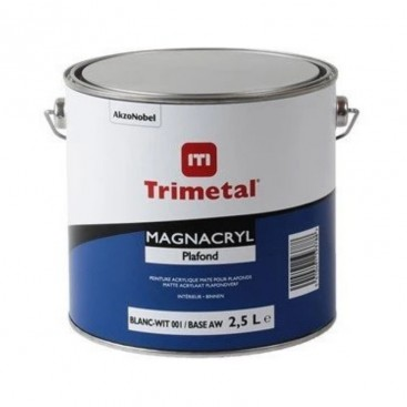 Magnacryl Plafond 2.5L wit