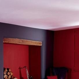 Reeds geverfde plafonds