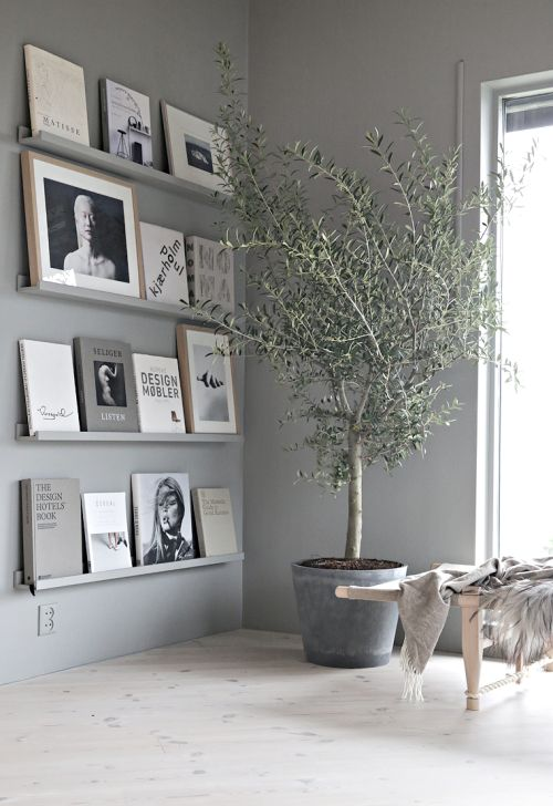 gris clair murs