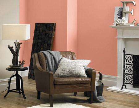 Kleurenwaaier voor uw woonkamer painttrade