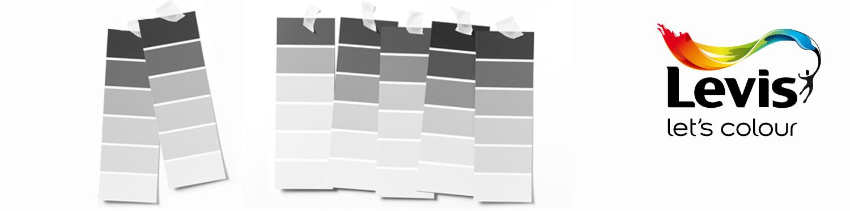 Levis kleurenwaaier grijs en zwart